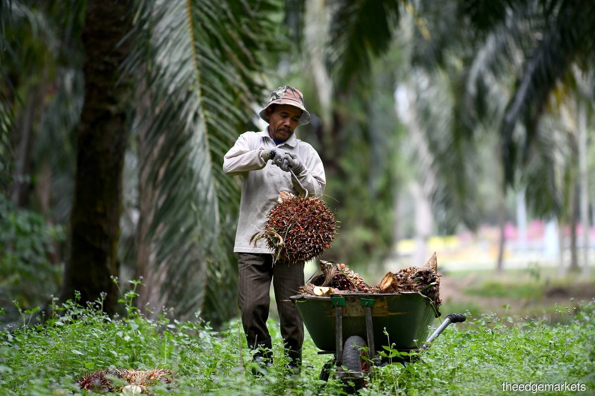 Mohd Khairuddin says Indonesia and Malaysia, which are the largest and second-largest palm oil producer countries in the world respectively, are also constantly seeking to reach an agreement in developing and maintaining the palm oil industry in both countries. (Photo by Mohd Suhaimi Mohamed Yusuf)