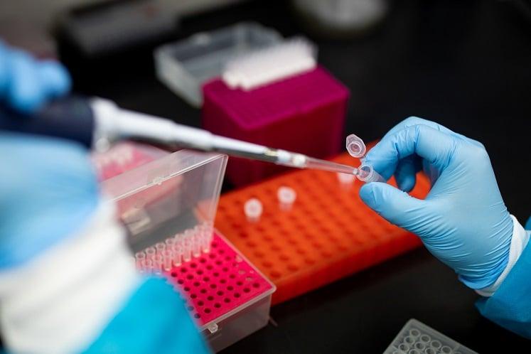 Thailand starts coronavirus vaccine trial on monkeys