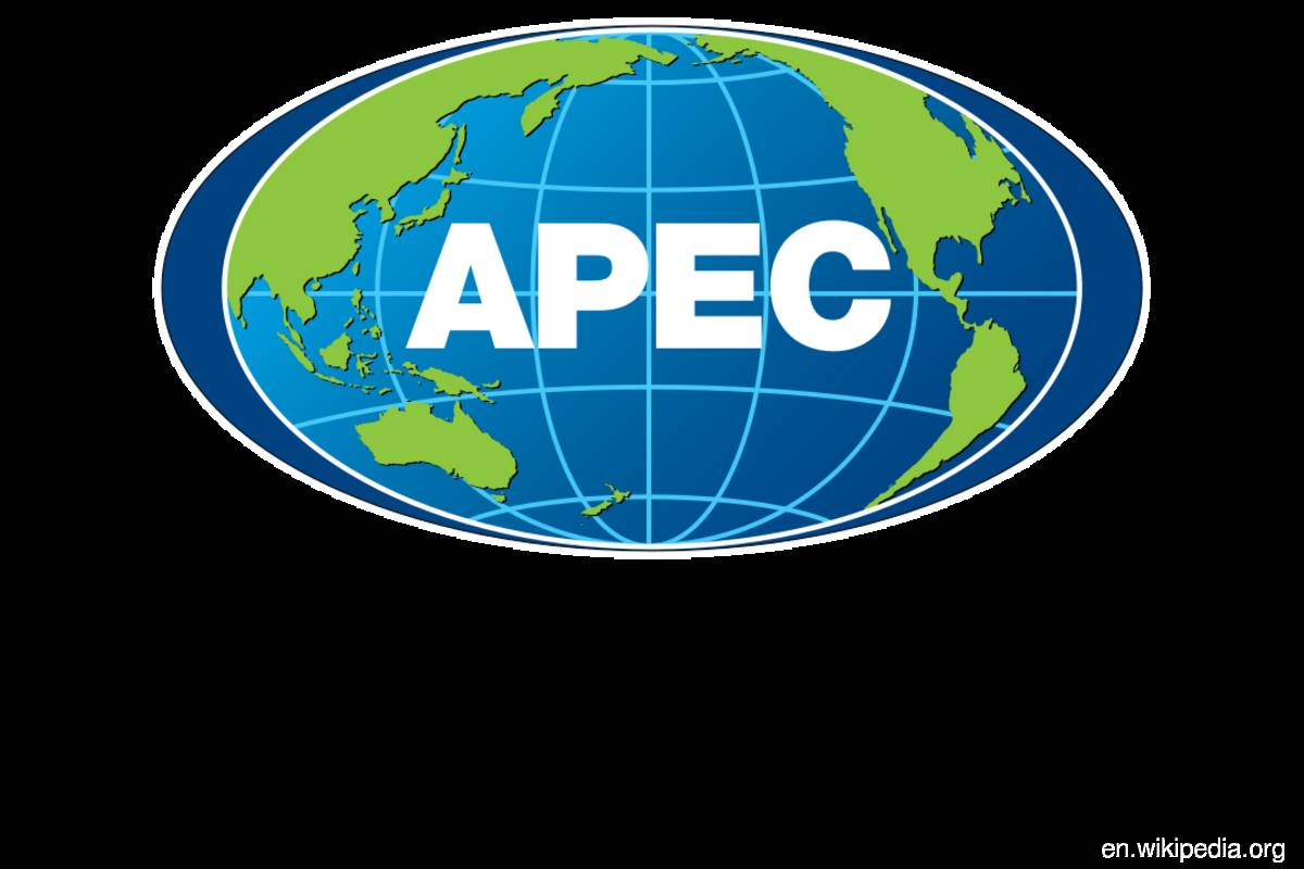 APEC council calls for 'coherent and timely solutions' to global challenges