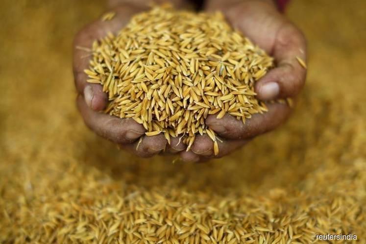 Asia Rice: India prices scale 1-year peak, cyclone hits Bangladesh crop