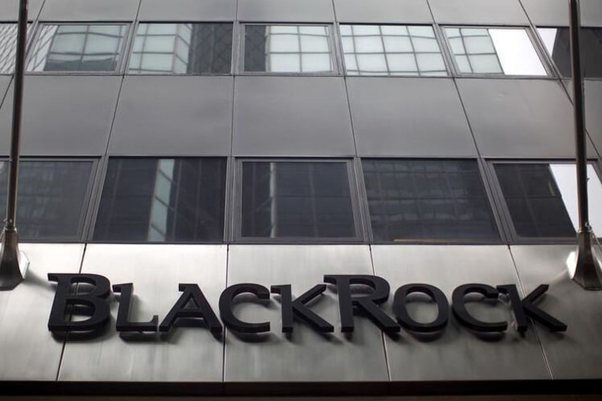 BlackRock sees 'advantageous' trade in dividend stocks next year