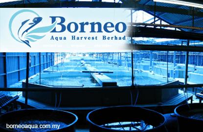 Borneo Aqua plans RM131m unit buy to diversify into mining