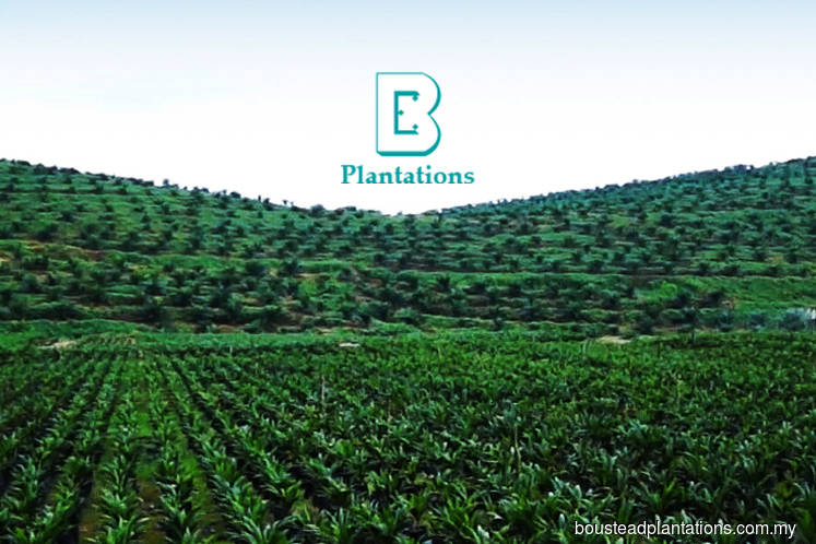 Boustead Plantations unsure if it can return to the black