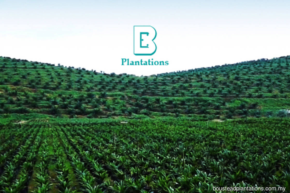 Boustead Plantations posts RM7.08m net profit in 2QFY20 with swing to operating profit