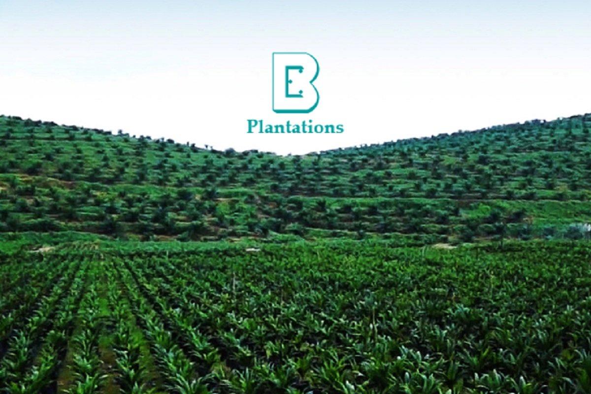 Boustead Plantations以4.29亿售柔佛地皮