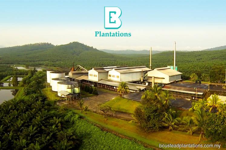Boustead Plantations falls 4.41% after slump in 1Q earnings