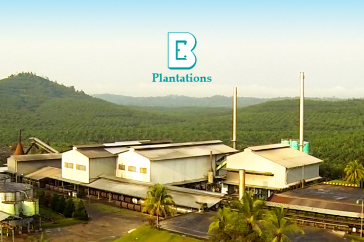 Boustead Plantations back in the black in 2Q thanks to disposal gain