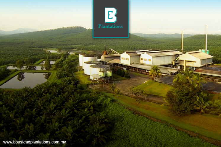 Boustead Plantations plans RM750m land buy in Sabah
