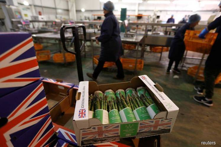 Boxes of asparagus are seen at Cobrey Farm in Ross-on-Wye, Britain, March 11, 2019. (Photo by: Peter Nicholls/REUTERS)