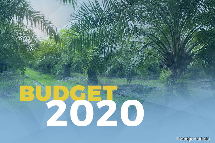 Govt allocates RM550m for palm oil smallholders, plans B20 biodiesel rollout in 2020