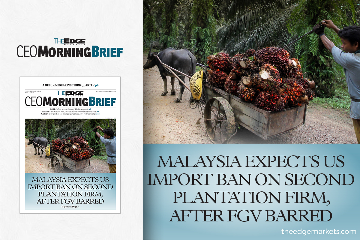 Malaysia expects US import ban on second plantation firm, after FGV barred