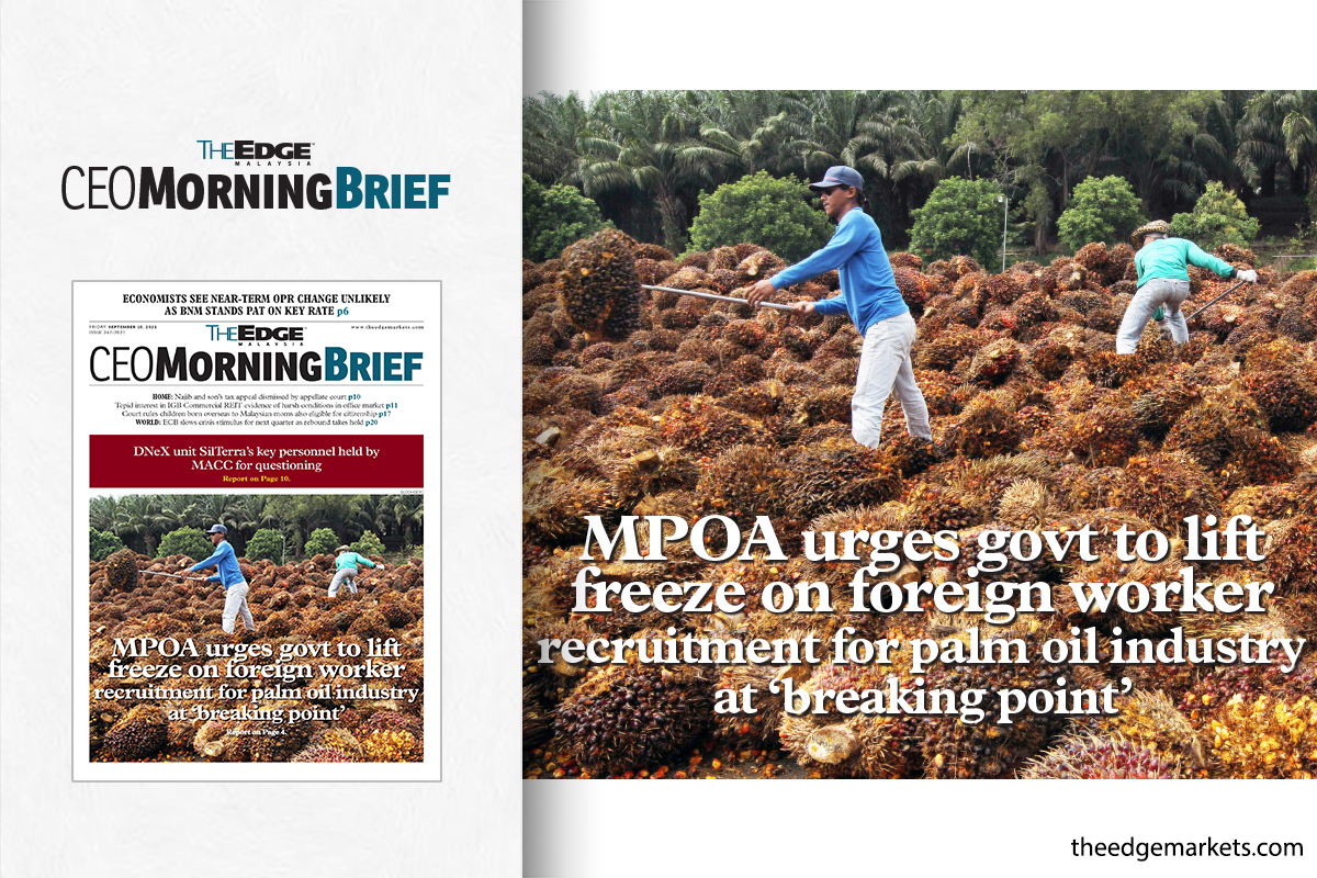 MPOA urges govt to lift freeze on foreign worker recruitment for palm oil industry at 'breaking point'