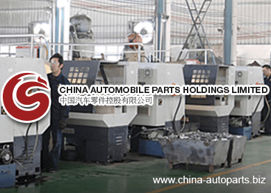 China_Automobile_Parts_Holdings