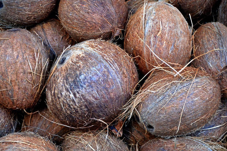 Curbing coconut imports tricky, says ministry