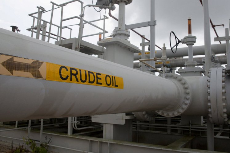 Energy stocks active, fall as crude oil hovers below US$30 amid possible glut