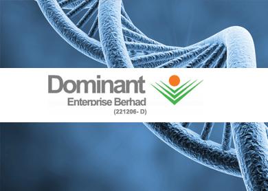 Dominant-Enterprise-Bhd