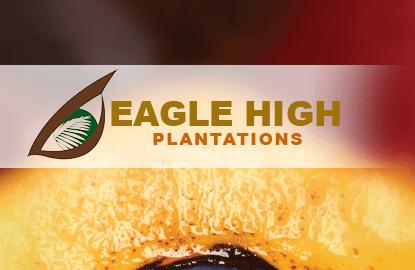 FIC says no to Eagle High stake