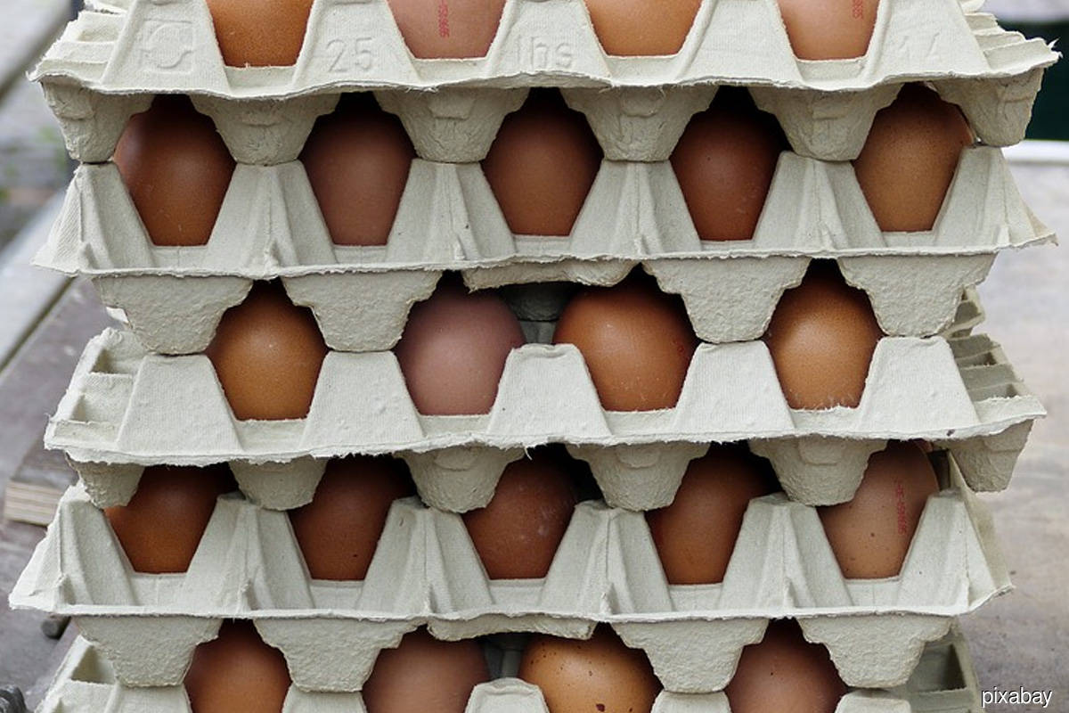 Chicken producer Sanderson Farms nears US$4.5b sale to Continental Grain, Cargill — WSJ