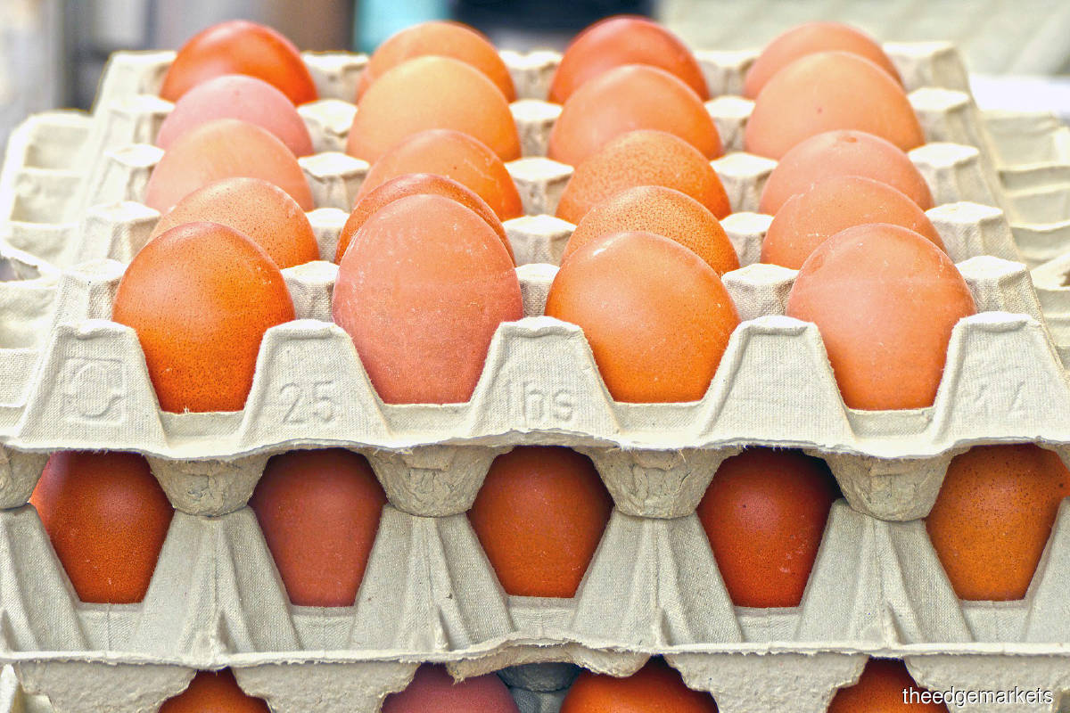 High feed costs and lower prices have poultry players walking on eggshells