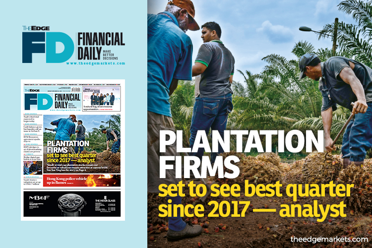 Plantation firms set to see best quarter since 2017 — analyst