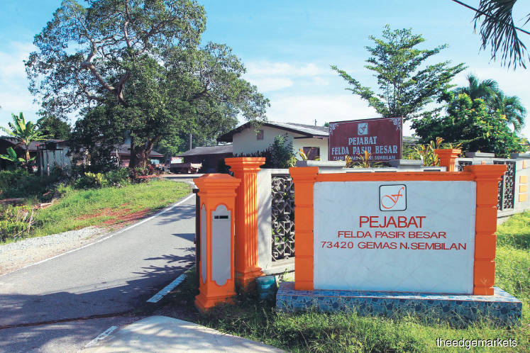 Settlers bearing the brunt of cash-flow issues at FELDA