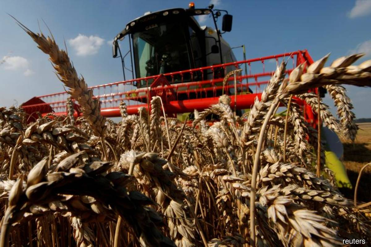 A French farmer sits in his combine as he harvests his wheat crop in Bugnicourt, northern France on Aug 9, 2012. (Photo by Pascal Rossignol/Reuters)