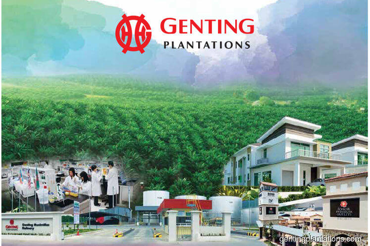 Genting Plantations pays 9.5 sen after 4Q net profit jumps fourfold