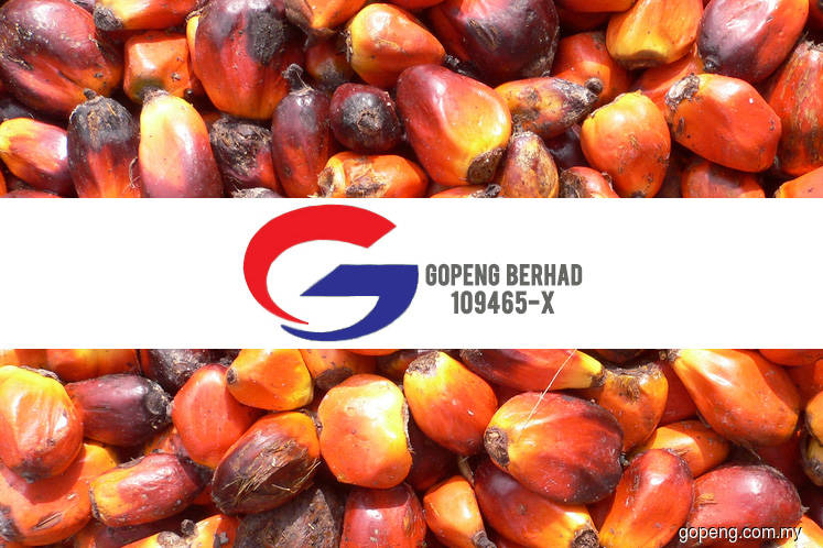 Gopeng proposes 1-for-2 bonus issue