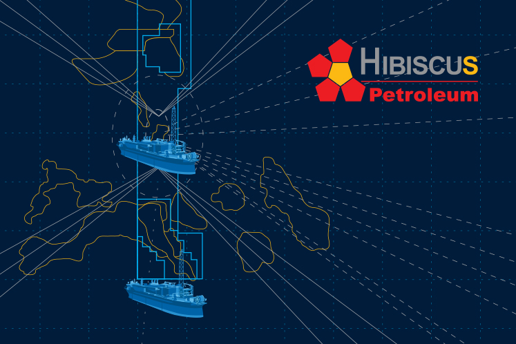 Hibiscus active, up 3.45% on plans to continue ops during restricted movement period