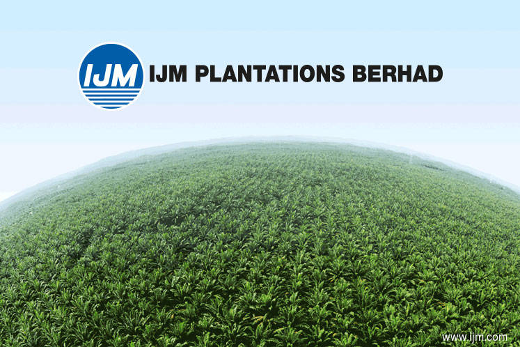 IJM Plantation sees FFB production hitting one mil tonne milestone in FY20