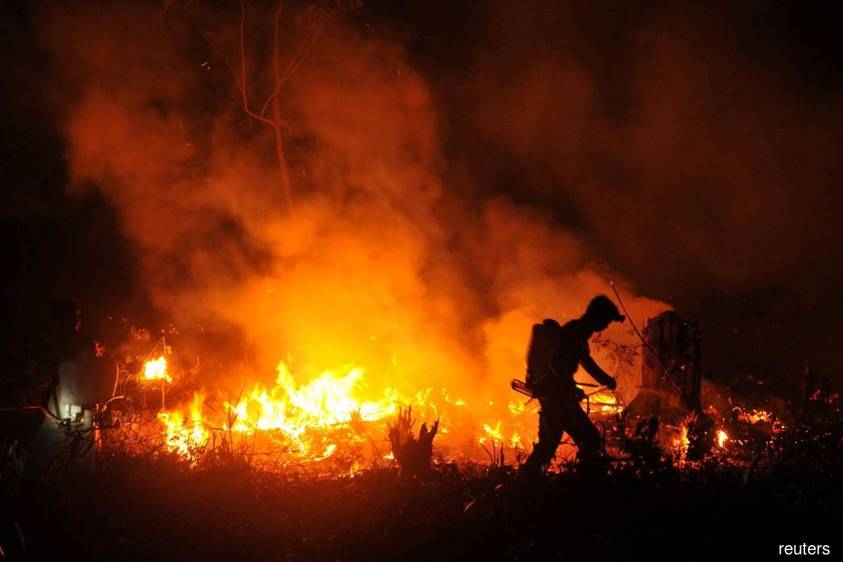Malaysia walks away from law to tackle firms over forest fires