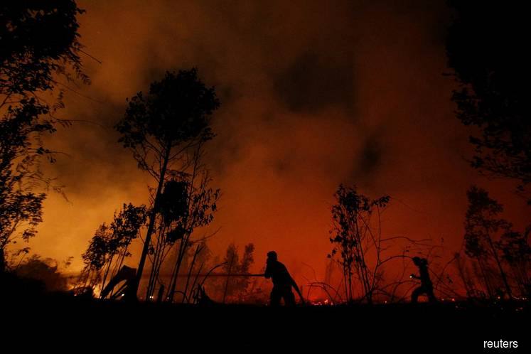 Indonesia's ragtag firefighters on frontline of Borneo's forest blazes