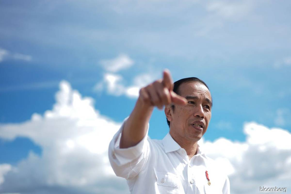 Jokowi backs central bank mandate to aid Indonesia's growth