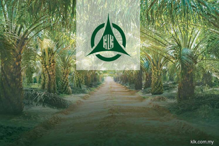 KLK posts higher 2Q net profit despite sharp fall in plantation earnings