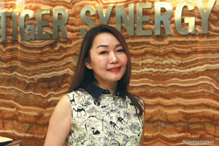 What is behind the boardroom row at Tiger Synergy?