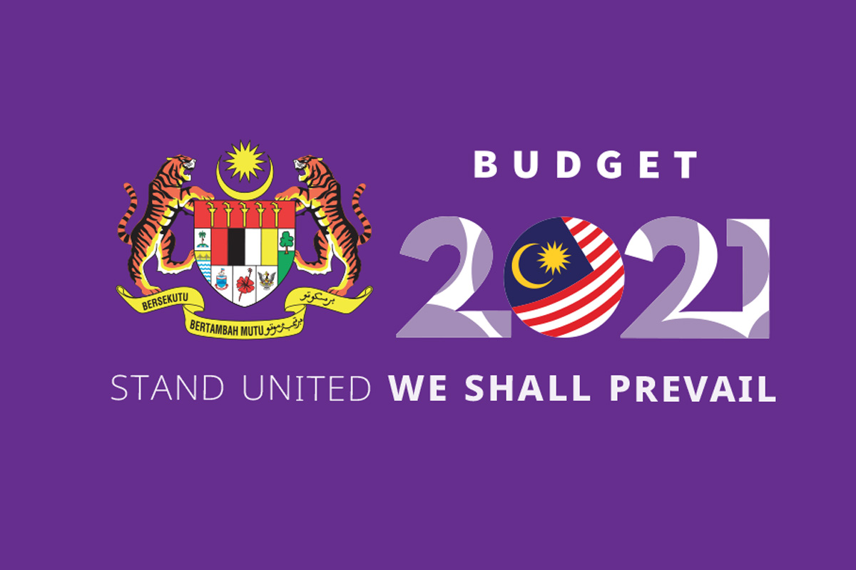 Budget 2021: Stand United We Shall Prevail