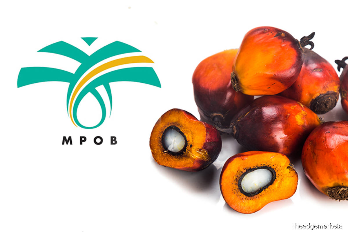 MPOB expects CPO prices to be stable at above RM4,000 in 3Q21