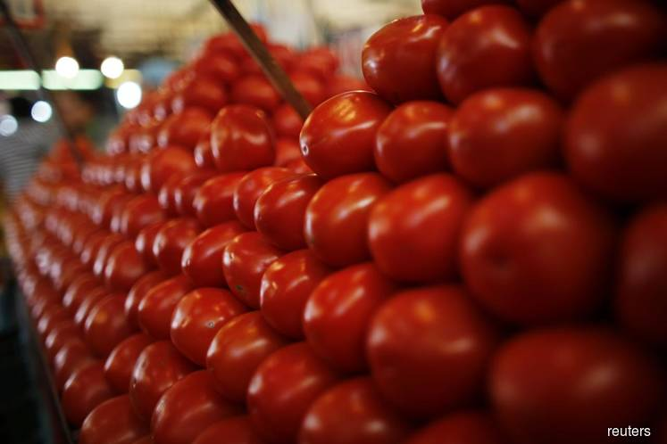 French agency warns of Wuhan virus threatening tomatoes, peppers