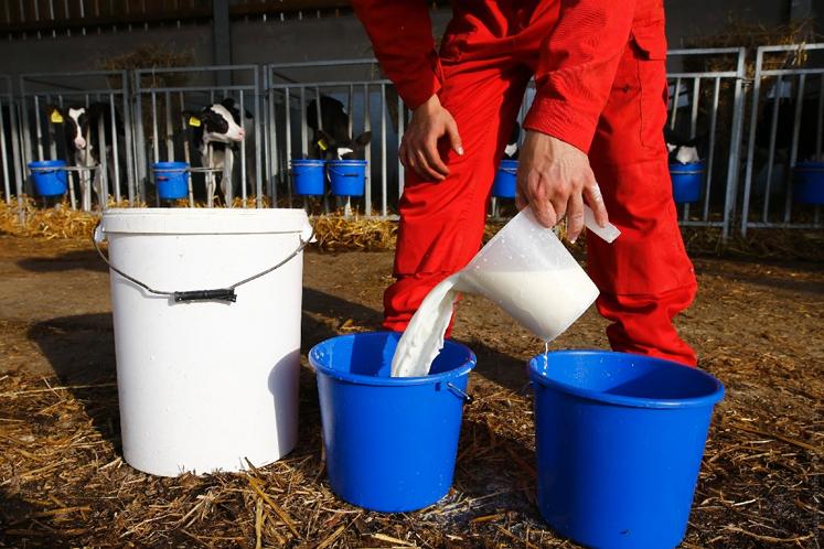 Call to prohibit importation of fresh milk into Sarawak