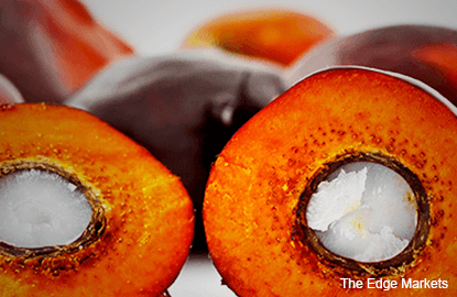 Palm oil to rise to RM3,128