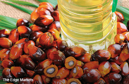 Palm oil edges up from near three-month low on positive export data