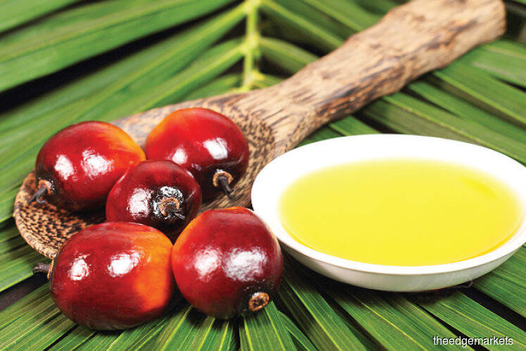 Palm edges higher after two days of declines