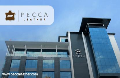Pecca集团IPO获证监会批准