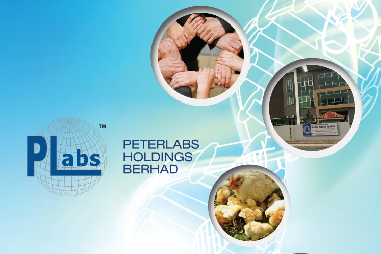 Peterlabs unaware of reason behind share price, volume spike