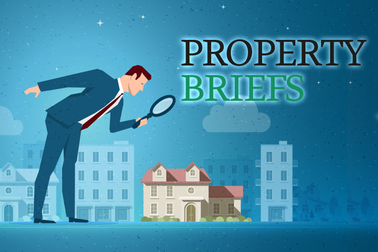 Property Briefs