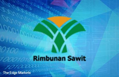 Stock With Momentum: Rimbunan Sawit Bhd