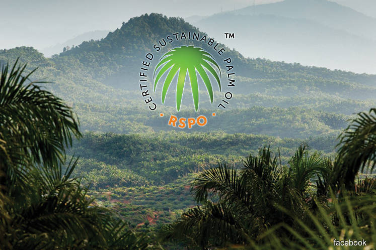 RSPO can now publish member palm oil concession maps for all of Malaysia