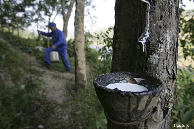 Rubber prices likely to remain bullish until 2018, say analysts