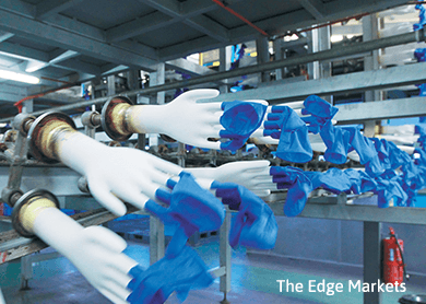 Glove makers advance on weaker ringgit
