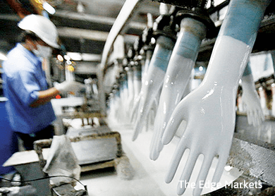 Glove counters surge on better quarterly results, stronger USD